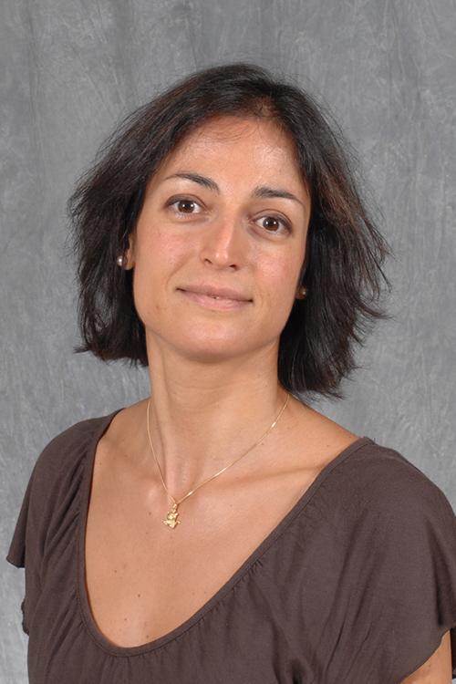 Ilaria Cerchiaro